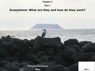 Chapter 3  Part 1 Ecosystems: What are they and how do they work
