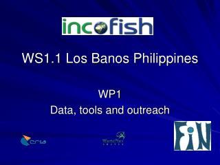 WS1.1 Los Banos Philippines