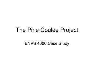 The Pine Coulee Project