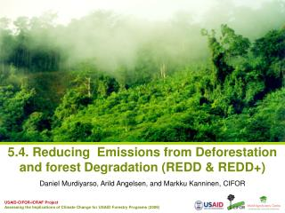 5.4. Reducing  Emissions from Deforestation and forest Degradation (REDD & REDD+)