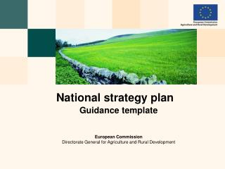 National strategy plan