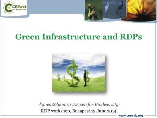 Green Infrastructure and RDPs