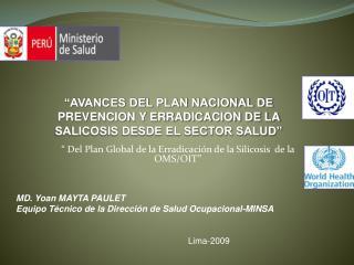 """"""" Del Plan Global de la Erradicación de la Silicosis  de la OMS/OIT"""""""