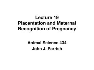 Lecture 19 Placentation and Maternal Recognition of Pregnancy
