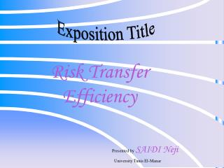 Risk Transfer Efficiency