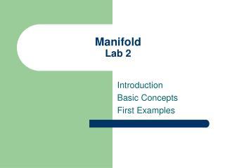 Manifold Lab 2