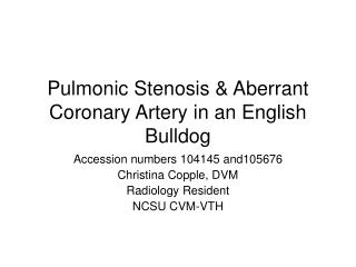 Pulmonic Stenosis & Aberrant Coronary Artery in an English Bulldog