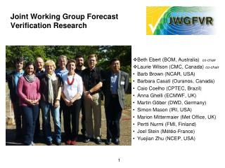 Joint Working Group Forecast Verification Research