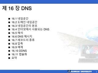 제 16 장  DNS