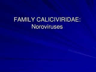 FAMILY CALICIVIRIDAE: Noroviruses