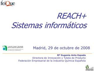 REACH+ Sistemas informáticos