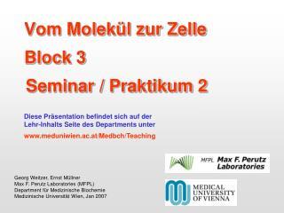 Vom Molekül zur Zelle Block 3 Seminar / Praktikum 2