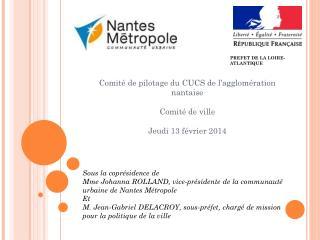 Comité de pilotage du CUCS de l'agglomération nantaise Comité de ville Jeudi 13 février 2014