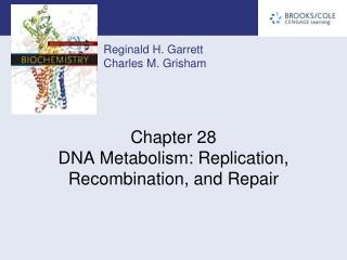 Chapter 28 DNA Metabolism: Replication, Recombination, and Repair