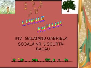 INV.  GALATANU GABRIELA SCOALA NR. 3 SCURTA-BACAU