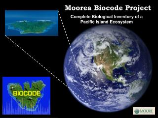 Complete Biological Inventory of a Pacific Island Ecosystem