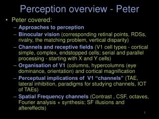 Perception overview - Peter
