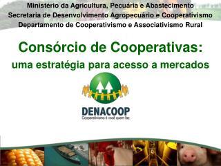 Cons�rcio de Cooperativas: uma estrat�gia para acesso a mercados