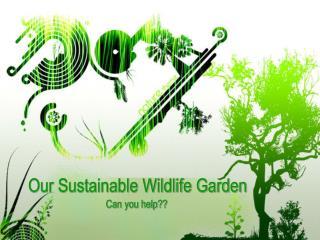 Our Sustainable Wildlife Garden