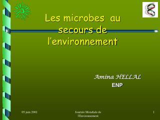 Les microbes  au secours de l'environnement