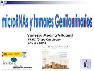 microRNAs y tumores Genitourinarios