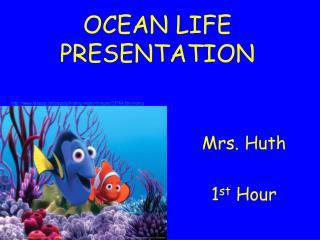 OCEAN LIFE PRESENTATION