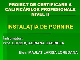 PROIECT DE CERTIFICARE A CALIFICĂRILOR PROFESIONALE NIVEL II