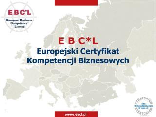 E B C*L Europejski Certyfikat Kompetencji Biznesowych