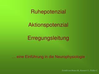 Ruhepotenzial Aktionspotenzial Erregungsleitung … eine Einführung in die Neurophysiologie