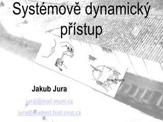 Systémově dynamický přístup