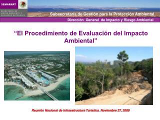 Dirección  General  de Impacto y Riesgo Ambiental