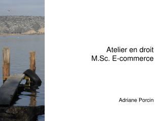 Atelier en droit M.Sc. E-commerce Adriane Porcin