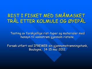 RIST I FISKET MED SMÅMASKET TRÅL ETTER KOLMULE OG ØYEPÅL