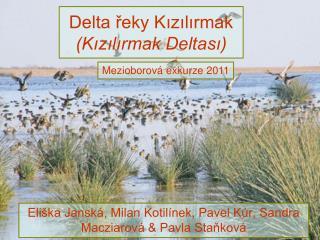 Delta řeky Kızılırmak (Kızılırmak Deltası)