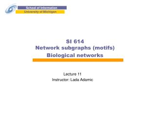 SI 614 Network subgraphs (motifs) Biological networks