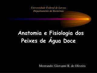Universidade Federal de Lavras Departamento de Zootecnia