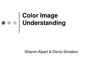 Color Image Understanding