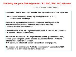 Klonering van grote DNA segmenten : P1, BAC, PAC, YAC vectoren.