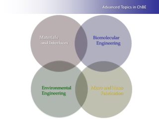 Plasma-Based Processes and Potential Applications to Biomaterials