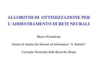 ALGORITMI DI  OTTIMIZZAZIONE PER  L'ADDESTRAMENTO DI RETI NEURALI  Marco Sciandrone