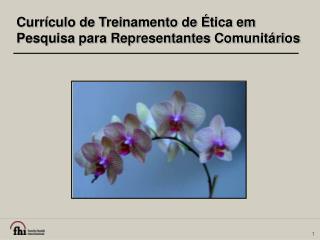 Currículo de Treinamento de Ética em Pesquisa para Representantes Comunitários