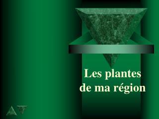 Les plantes  de ma région