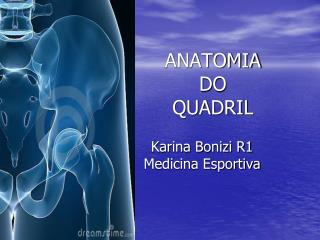 ANATOMIA  DO  QUADRIL