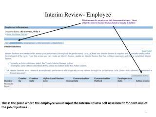 Interim Review- Employee