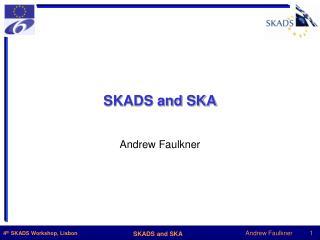 SKADS and SKA