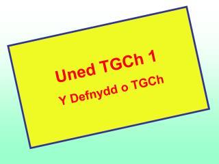 Uned TGCh 1 Y Defnydd o TGCh