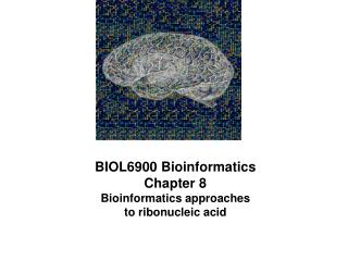 BIOL6900 Bioinformatics Chapter 8 Bioinformatics approaches  to ribonucleic acid