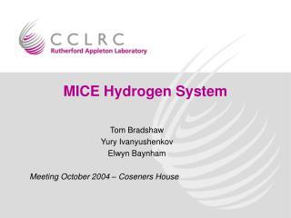 MICE Hydrogen System