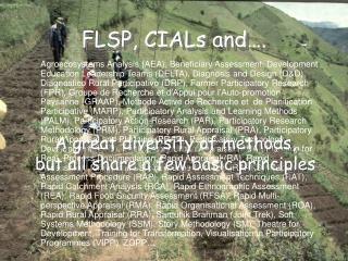 FLSP, CIALs and….
