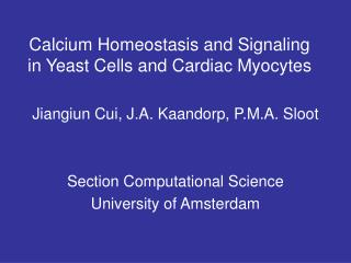 Calcium Homeostasis and Signaling in Yeast Cells and Cardiac Myocytes